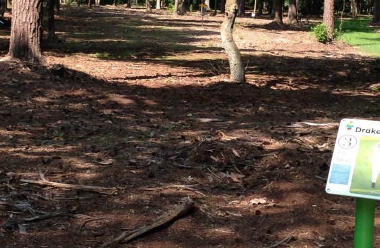 Hole 3 Billybird Drakenrijk